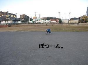 Img_3194_2